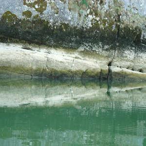 Image 253 - Jean-Pierre sergent, Water, Rocks, Trees & Flowers, April 2014, JP Sergent