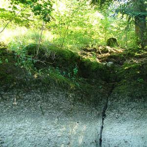 Image 261 - Jean-Pierre sergent, Water, Rocks, Trees & Flowers, April 2014, JP Sergent
