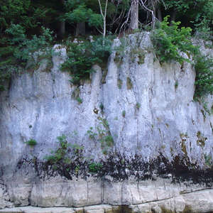 Image 264 - Jean-Pierre sergent, Water, Rocks, Trees & Flowers, April 2014, JP Sergent