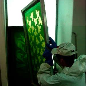 Image 42 - At work Plexiglas, JP Sergent