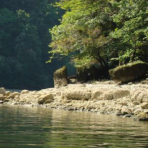 Image 33 - Jean-Pierre sergent, Water, Rocks, Trees & Flowers, 2015, JP Sergent