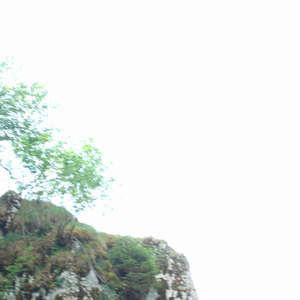 Image 26 - Jean-Pierre sergent, Water, Rocks, Trees & Flowers, 2015, JP Sergent