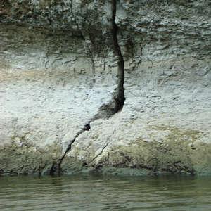 Image 134 - Jean-Pierre sergent, Water, Rocks, Trees & Flowers, 2015, JP Sergent