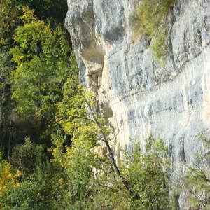 Image 156 - Jean-Pierre sergent, Water, Rocks, Trees & Flowers, 2015, JP Sergent