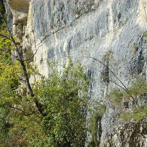 Image 157 - Jean-Pierre sergent, Water, Rocks, Trees & Flowers, 2015, JP Sergent