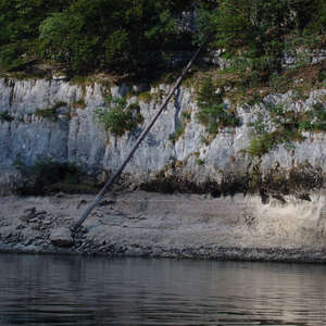 Image 112 - Jean-Pierre sergent, Water, Rocks, Trees & Flowers, 2015, JP Sergent