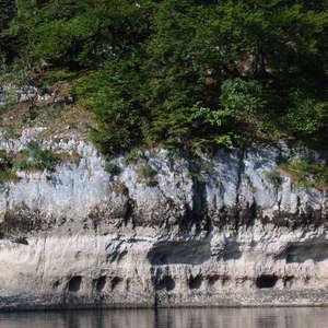 Image 110 - Jean-Pierre sergent, Water, Rocks, Trees & Flowers, 2015, JP Sergent