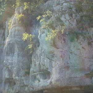 Image 105 - Jean-Pierre sergent, Water, Rocks, Trees & Flowers, 2015, JP Sergent
