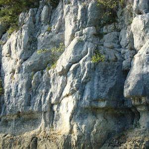 Image 103 - Jean-Pierre sergent, Water, Rocks, Trees & Flowers, 2015, JP Sergent