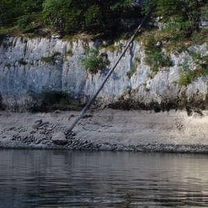 Image 111 - Jean-Pierre sergent, Water, Rocks, Trees & Flowers, 2015, JP Sergent