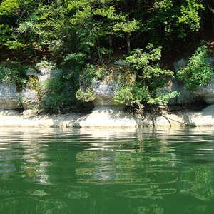 Image 12 - Jean-Pierre sergent, Water, Rocks, Trees & Flowers, 2015, JP Sergent