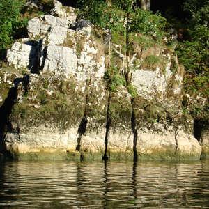 Image 119 - Jean-Pierre sergent, Water, Rocks, Trees & Flowers, 2015, JP Sergent