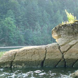 Image 117 - Jean-Pierre sergent, Water, Rocks, Trees & Flowers, 2015, JP Sergent