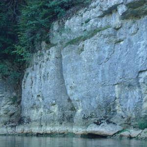 Image 123 - Jean-Pierre sergent, Water, Rocks, Trees & Flowers, 2015, JP Sergent