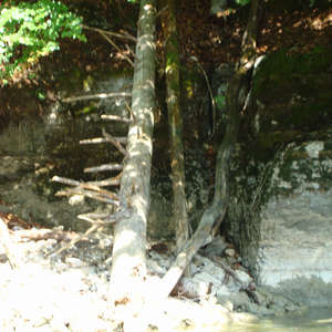 Image 19 - Jean-Pierre sergent, Water, Rocks, Trees & Flowers, 2015, JP Sergent