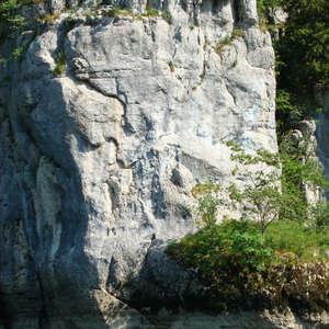 Image 1 - Jean-Pierre sergent, Water, Rocks, Trees & Flowers, 2015, JP Sergent