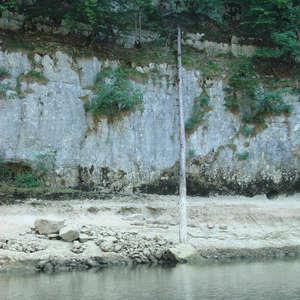 Image 76 - Jean-Pierre sergent, Water, Rocks, Trees & Flowers, 2015, JP Sergent