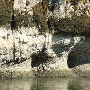 Image 67 - Jean-Pierre sergent, Water, Rocks, Trees & Flowers, 2015, JP Sergent