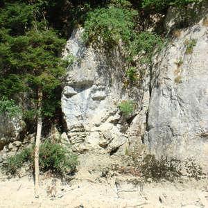 Image 53 - Jean-Pierre sergent, Water, Rocks, Trees & Flowers, 2015, JP Sergent