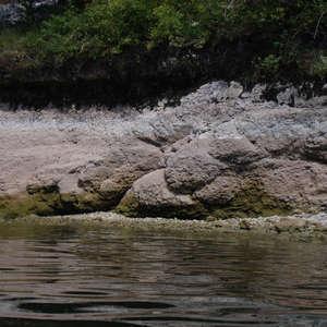 Image 34 - Jean-Pierre sergent, Water, Rocks, Trees & Flowers, 2015, JP Sergent