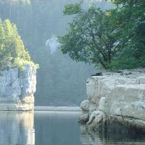 Image 97 - Jean-Pierre sergent, Water, Rocks, Trees & Flowers, 2015, JP Sergent