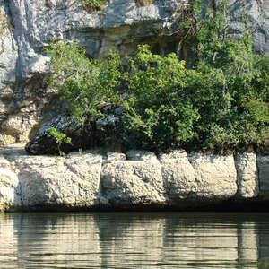 Image 87 - Jean-Pierre sergent, Water, Rocks, Trees & Flowers, 2015, JP Sergent
