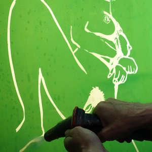 Image 137 - Bones & Flowers: The Metamorphosis of Life (Work), 2015, JP Sergent