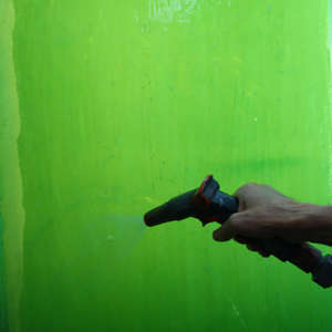 Image 133 - Bones & Flowers: The Metamorphosis of Life (Work), 2015, JP Sergent