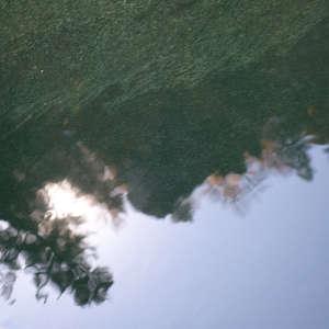 Image 70 - WATER, ROCKS, TREES & SKIES 2016, JP Sergent