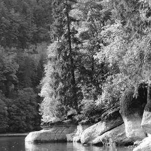 Image 139 - WATER, ROCKS, TREES & SKIES 2016, JP Sergent
