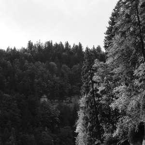 Image 146 - WATER, ROCKS, TREES & SKIES 2016, JP Sergent