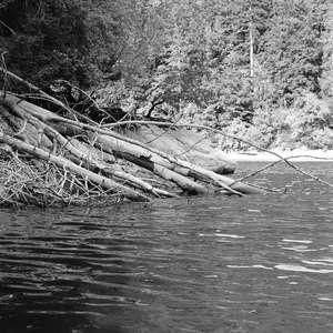 Image 167 - WATER, ROCKS, TREES & SKIES 2016, JP Sergent