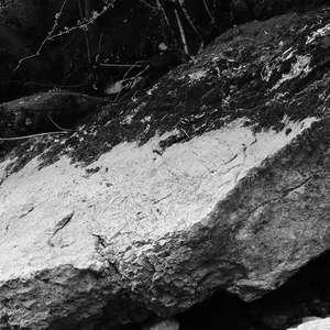 Image 156 - WATER, ROCKS, TREES & SKIES 2016, JP Sergent