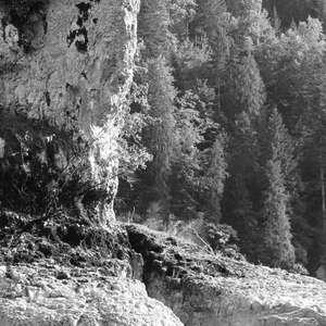 Image 118 - WATER, ROCKS, TREES & SKIES 2016, JP Sergent