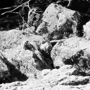 Image 109 - WATER, ROCKS, TREES & SKIES 2016, JP Sergent