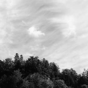 Image 133 - WATER, ROCKS, TREES & SKIES 2016, JP Sergent