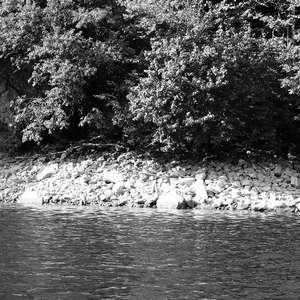Image 136 - WATER, ROCKS, TREES & SKIES 2016, JP Sergent