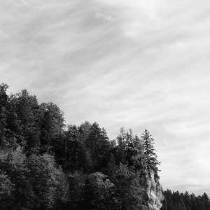Image 138 - WATER, ROCKS, TREES & SKIES 2016, JP Sergent