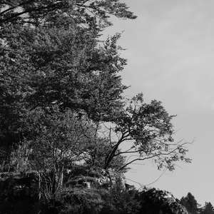 Image 123 - WATER, ROCKS, TREES & SKIES 2016, JP Sergent