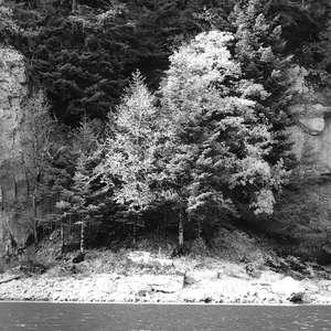 Image 126 - WATER, ROCKS, TREES & SKIES 2016, JP Sergent
