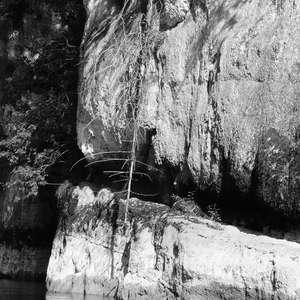 Image 124 - WATER, ROCKS, TREES & SKIES 2016, JP Sergent