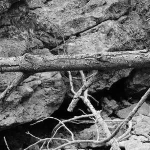 Image 173 - WATER, ROCKS, TREES & SKIES 2016, JP Sergent
