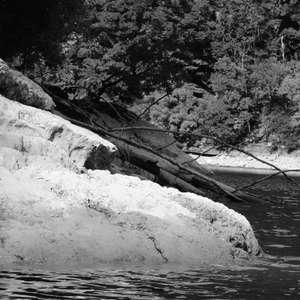 Image 172 - WATER, ROCKS, TREES & SKIES 2016, JP Sergent