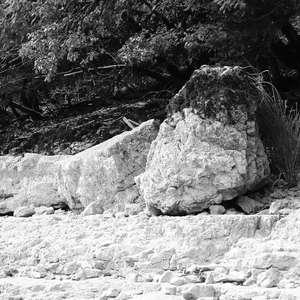 Image 183 - WATER, ROCKS, TREES & SKIES 2016, JP Sergent