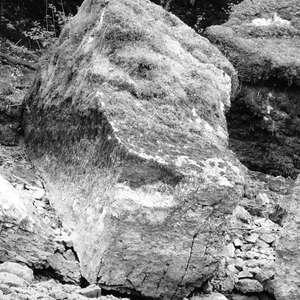 Image 222 - WATER, ROCKS, TREES & SKIES 2016, JP Sergent