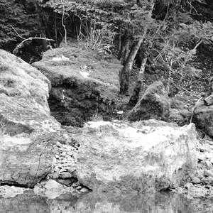 Image 221 - WATER, ROCKS, TREES & SKIES 2016, JP Sergent
