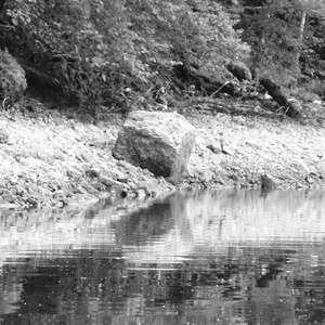 Image 223 - WATER, ROCKS, TREES & SKIES 2016, JP Sergent