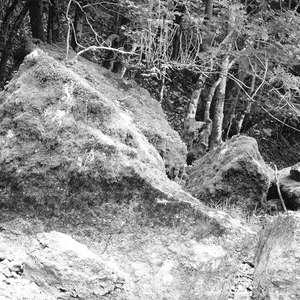 Image 213 - WATER, ROCKS, TREES & SKIES 2016, JP Sergent