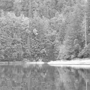 Image 216 - WATER, ROCKS, TREES & SKIES 2016, JP Sergent