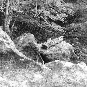 Image 209 - WATER, ROCKS, TREES & SKIES 2016, JP Sergent